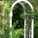 illustration pergola de jardin